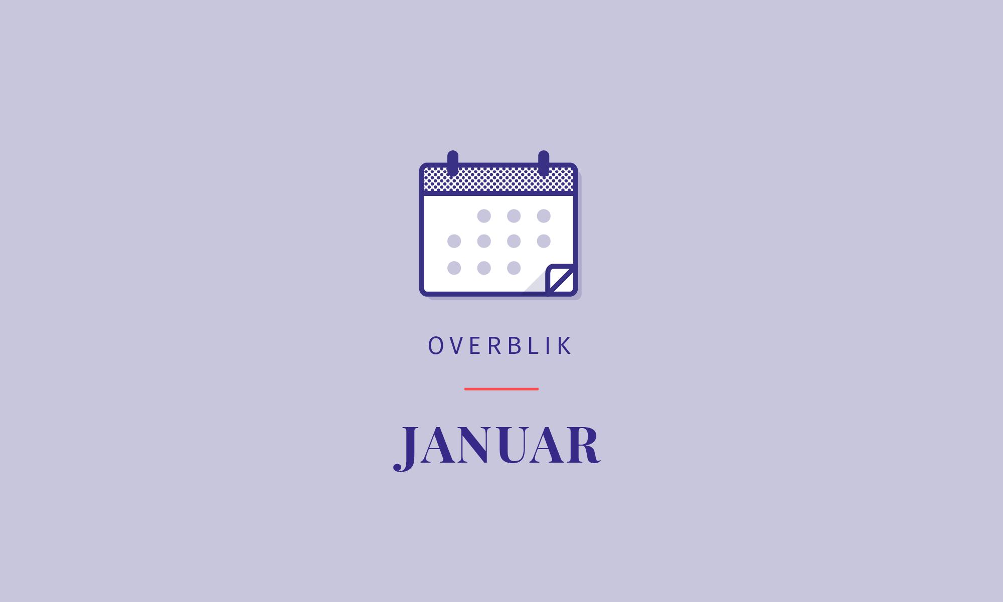 Overblik: Stærk januar for Junes fonde